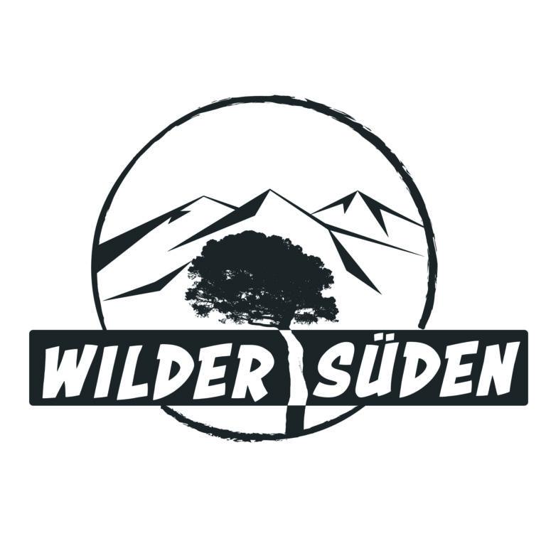 ueli gyger logo thun